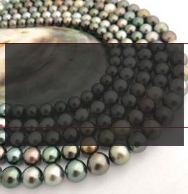 les plus belles perles de Tahiti